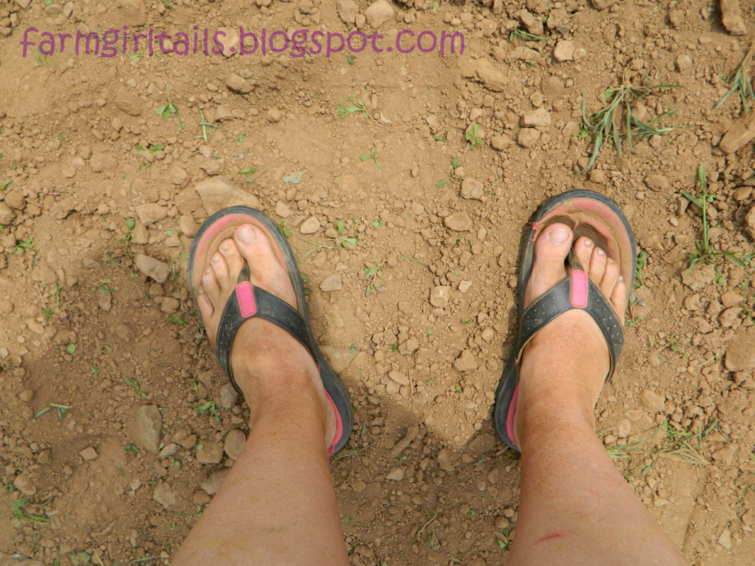 Dirty flip flops and feet clean up part 3wmv