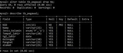 Cara Mudah Menghapus Field pada Tabel MySQL