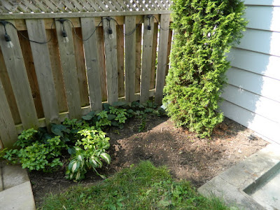 Riverdale backyard Toronto fall cleanup after by Paul Jung Gardening Services