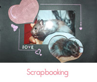 scrapbooking coeur