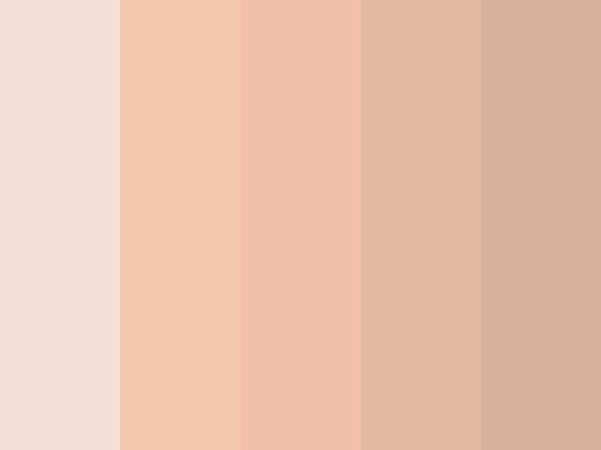 paleta nude