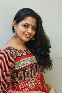 Telugu Actress Nikhila Vimal Latest Stills in Anarkali Dress  0099.JPG