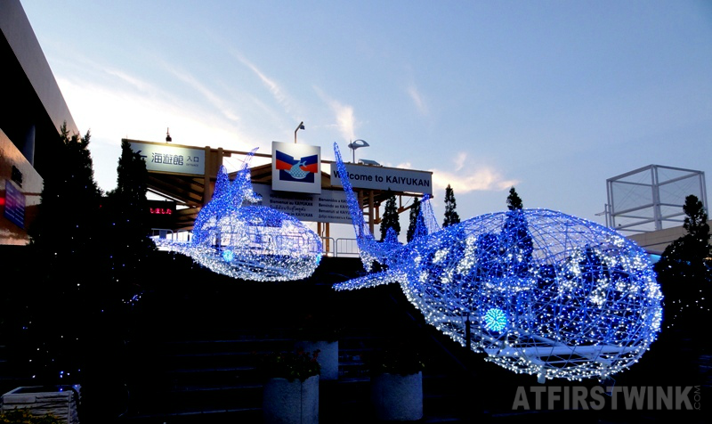 Kaiyukan Osaka aquarium whale sharks light decorations outside