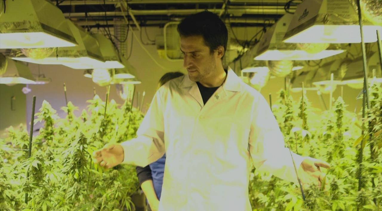 Alfredo Rodríguez (Dennt Brechner) es un farmacéutico que junto a su madre deciden vender brownies en cuya receta está incluida la marihuana, haciendo muy ...