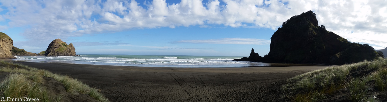 PIHA BEACH Auckland New Zealand