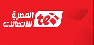 اون لاين فاتورة التليفون الأرضي يوليو 2017 وطرق سداد فواتير التليفون المنزلي مجانا من موقع المصرية للاتصالات billing.te.eg