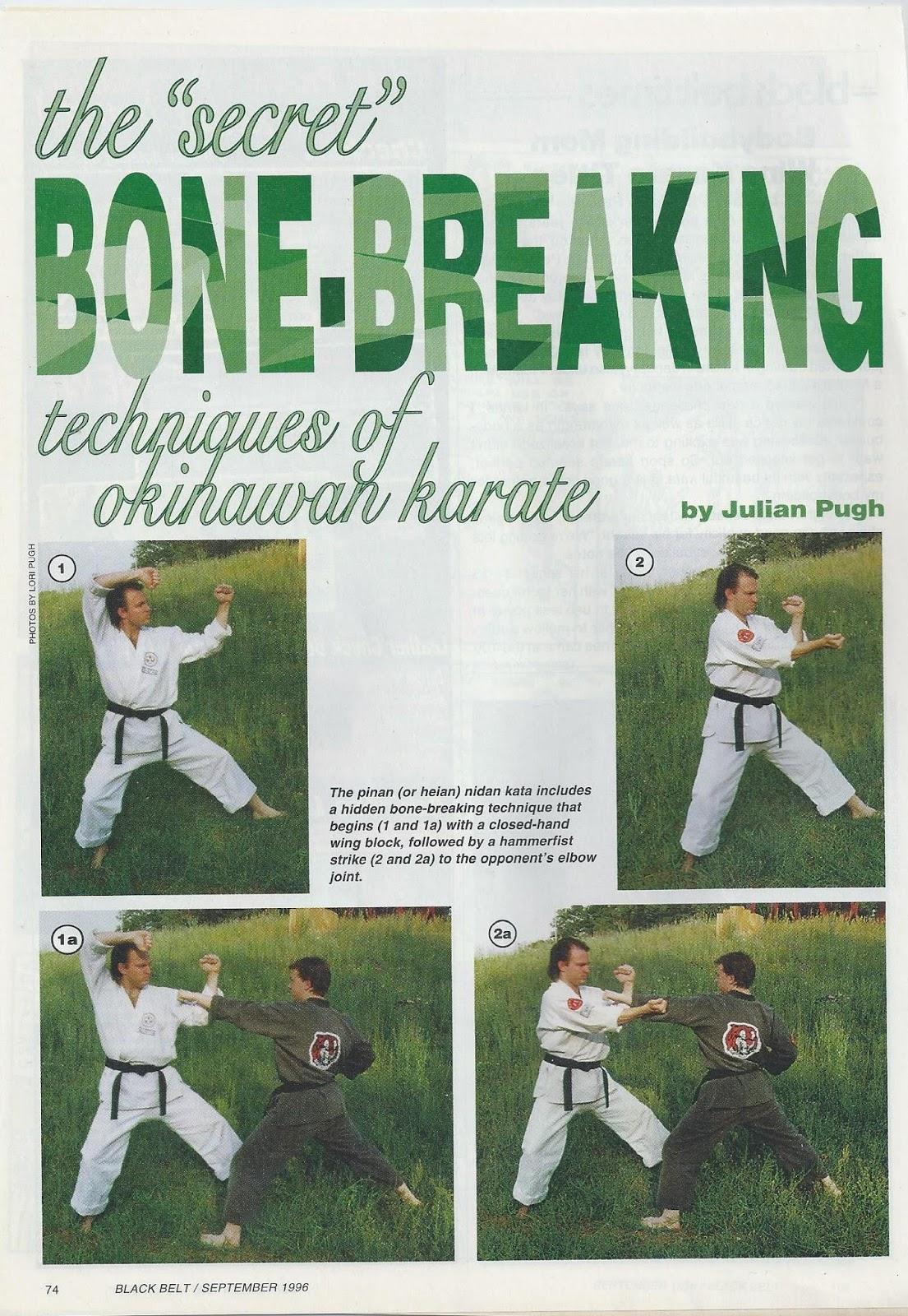 Wansu fourth kata hidden fist