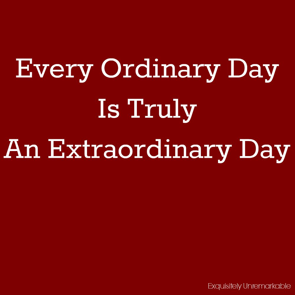 An Extraordinary Day: Every Ordinary Day Is Truly An Extraordinary Day