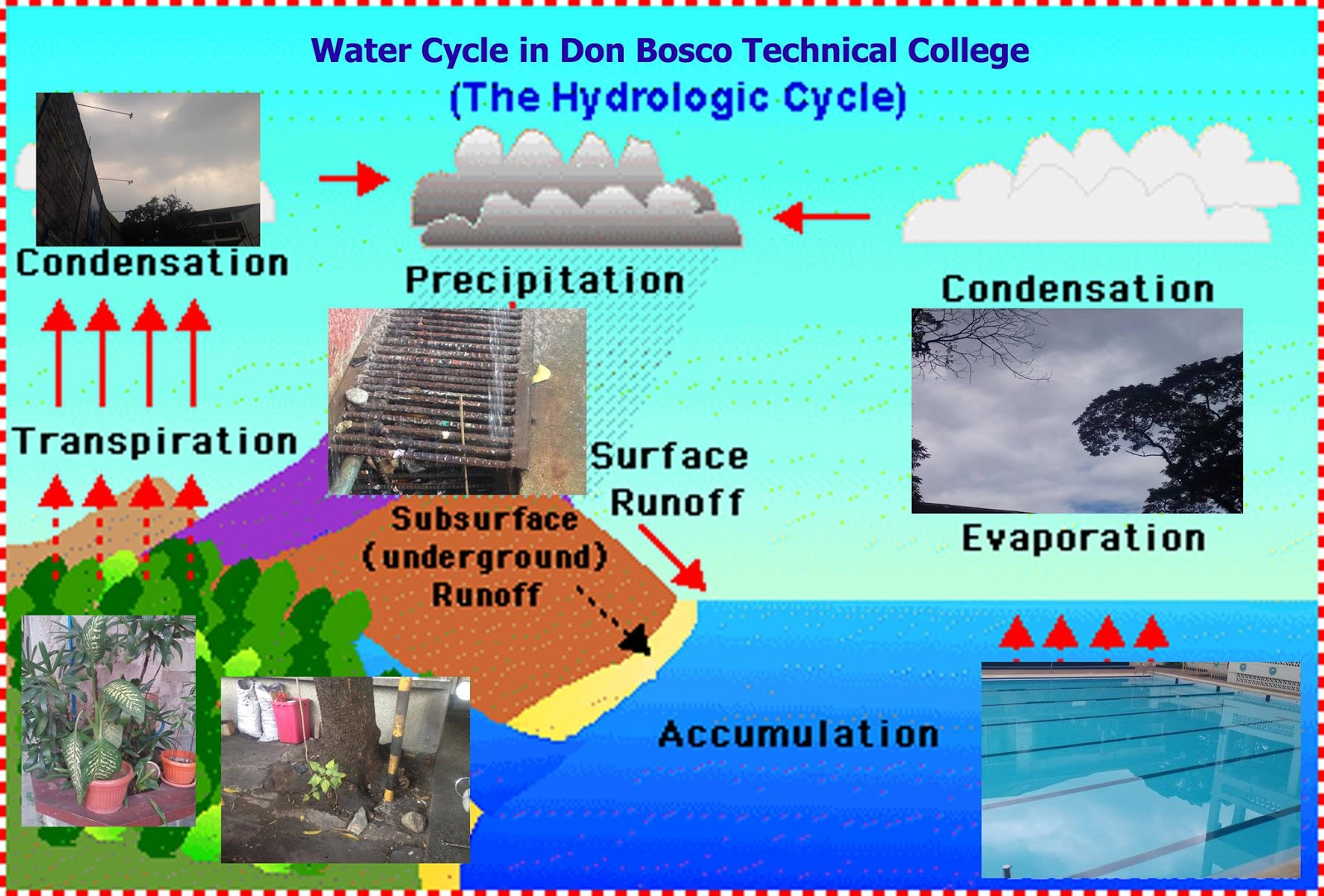 Environmental Science Water Cycle