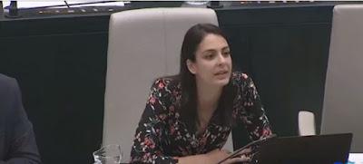 Rita Maestre, Podemos, Ahora  Madrid, Enchufe, pp, Enchufe