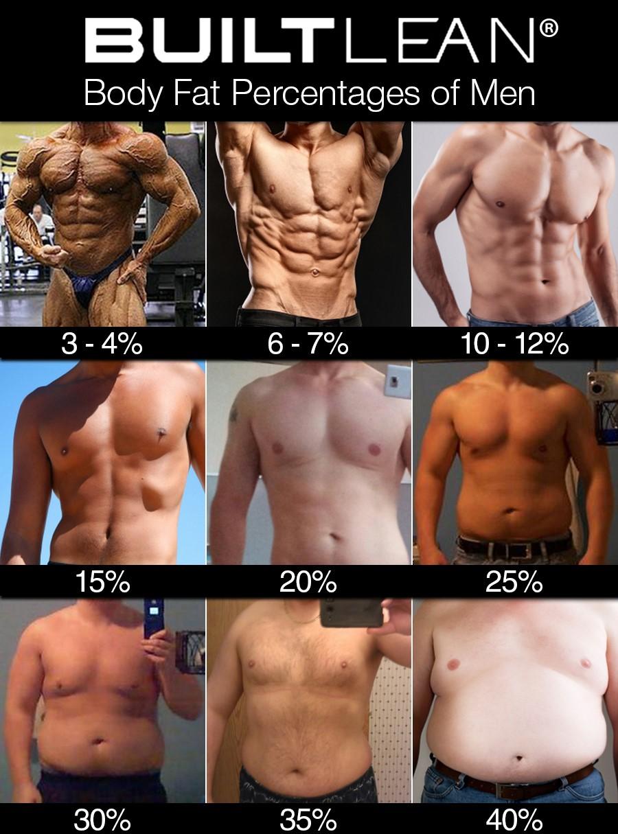 Diet pills that focus on belly fat photo 8