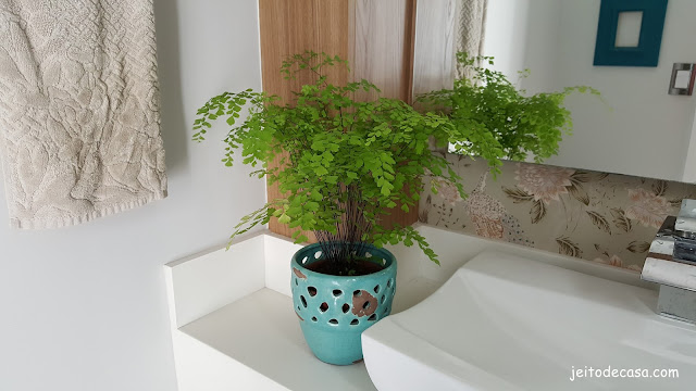 plantas-para-decoração-lavabo