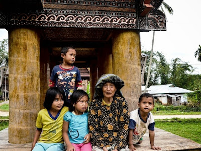 Harmoni Alam dan Budaya di Pelataran Tongkonan, Pedesaan Toraja