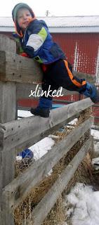 xlinked