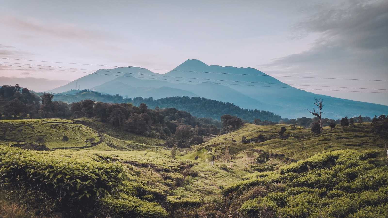 Pendakian Gunung Kencana Bogor 1803MDPL viaTelaga Warna