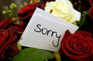 SORRY IN HINDI