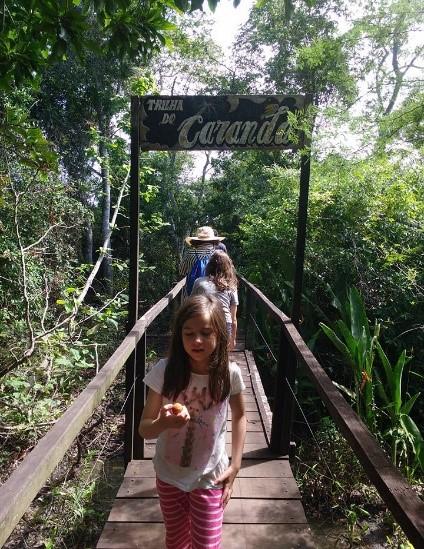 Trilha do Carandá Pantanal