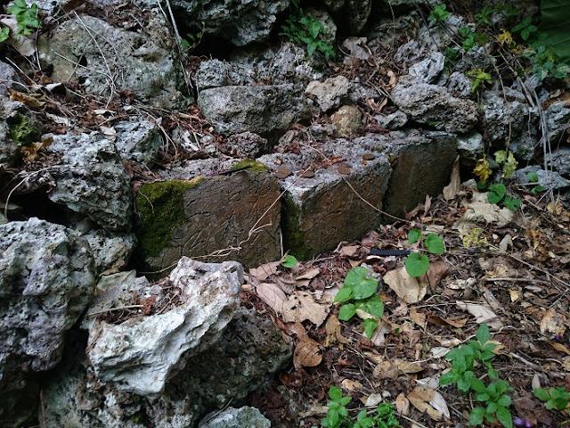 大城城跡 ミサマの写真