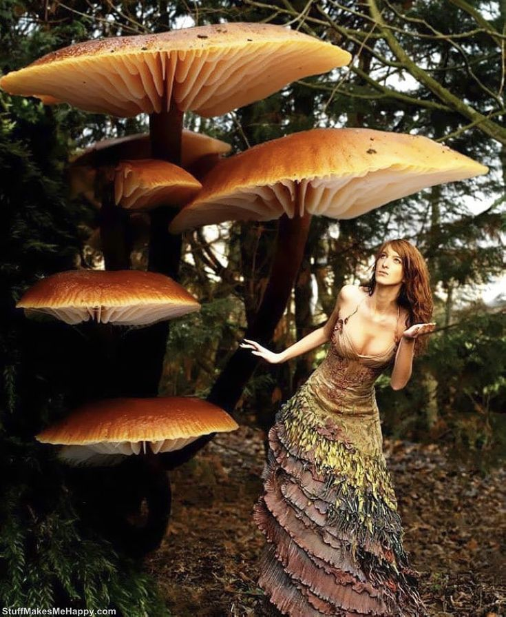 Fairy mushroom dress