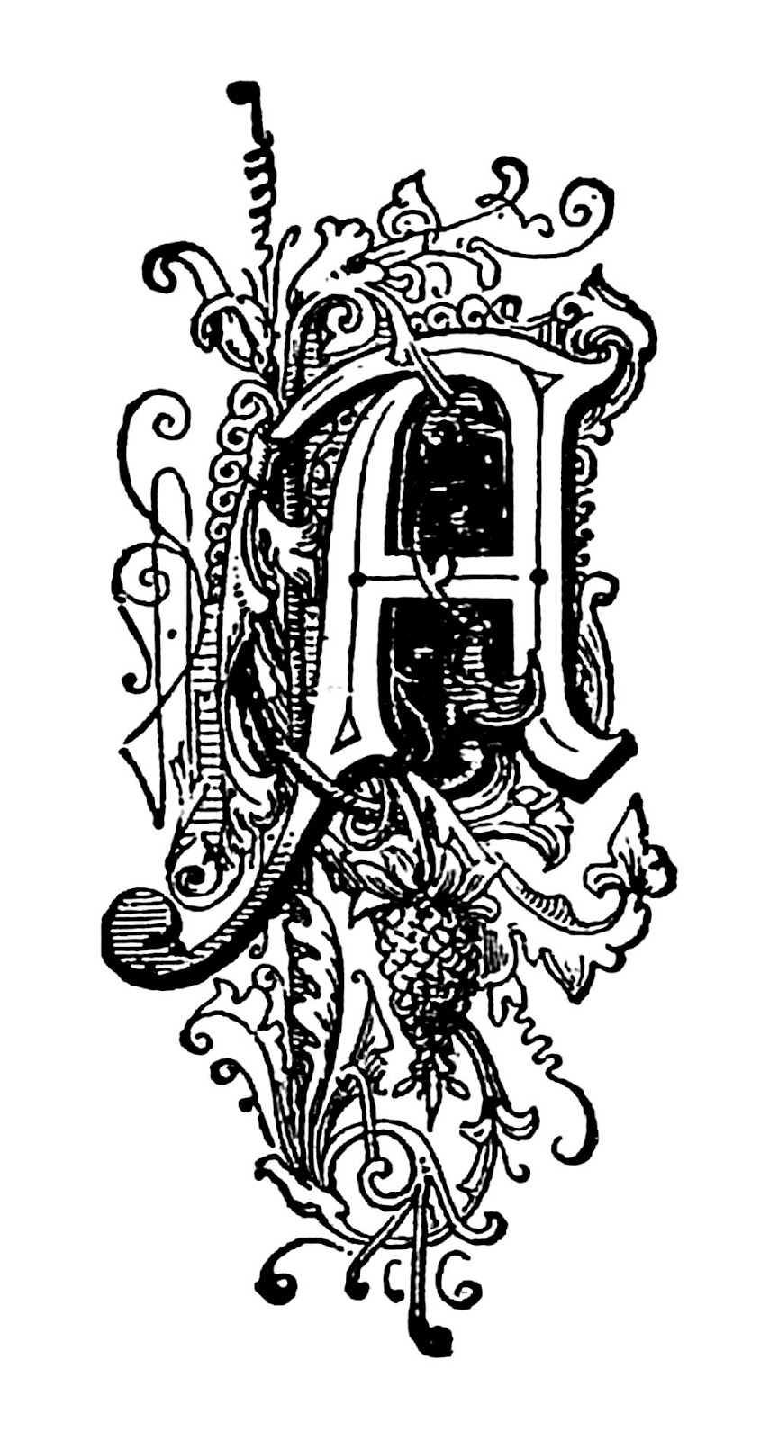 Decorative Letter A.Antique Images Free Black And White Illustration