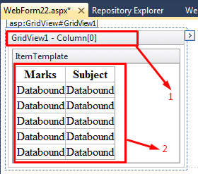 Nested GridView Using c# Net In Asp Net « Asp Net,MVC,C# Net,VB Net