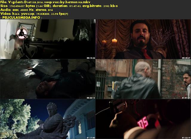 Descargar Vigilante Diaries Subtitulado por MEGA.