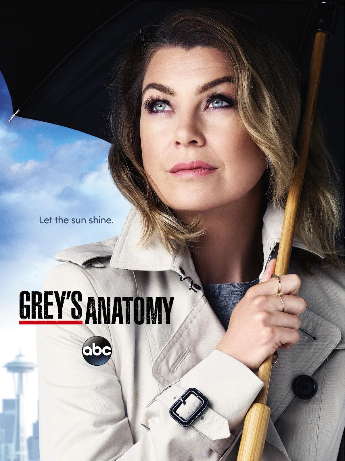 Vizionati acum serialul Grey's Anatomy Sezonul 12 Episodul 13 Online Gratis Subtitrat
