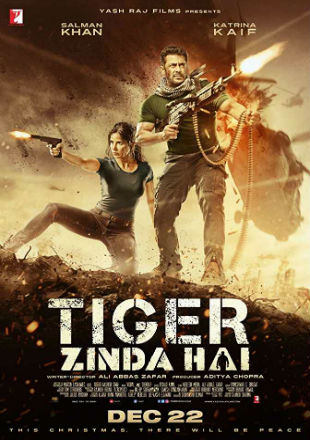 Tiger Zinda Hai 2017 DVDScr  450MB Full Hindi Movie Download 480p Watch Online Free bolly4u