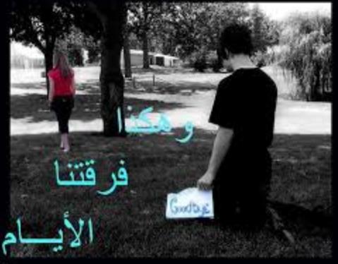 رواية فرقتنا الأيام - ميمو مصطفى