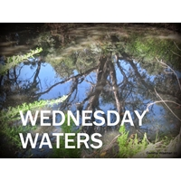 http://waterysonglines.blogspot.de/search/label/Wednesday%20Waters