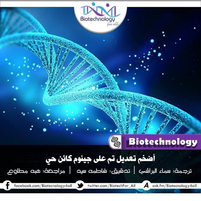 أضخم تعديل تم علي جينوم كائن حي
