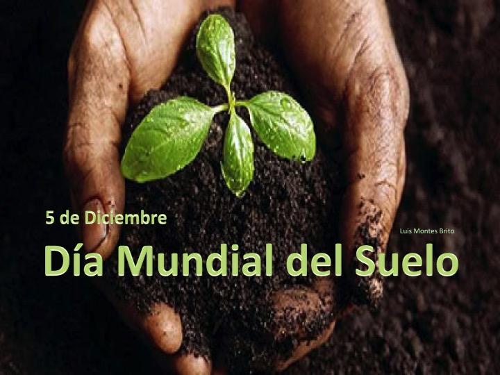 Compartiendo mi opini n hoy 5 de diciembre se celebra el for A que se denomina suelo