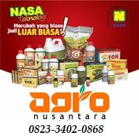AGEN NASA DI Madat Aceh Timur - TELF 082334020868