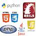 لغات البرمجة كل ما تريد معرفته !