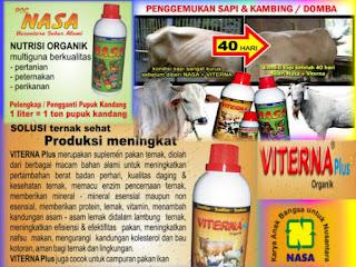 AGEN NASA DI Pegasing Aceh Tengah - TELF 082334020868