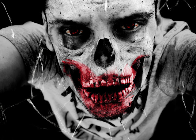 Recommended Zombie Book for Horror Readers