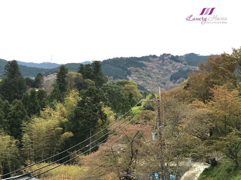 yoshino sacred sites pilgrimage routes kii mountain range