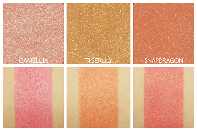 Swatches of Becca Shimmering Skin Perfector Luminous Blush in Camellia, Tigerlily and Snapdragon