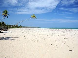 Vista da quarta praia, com coqueiros e areal