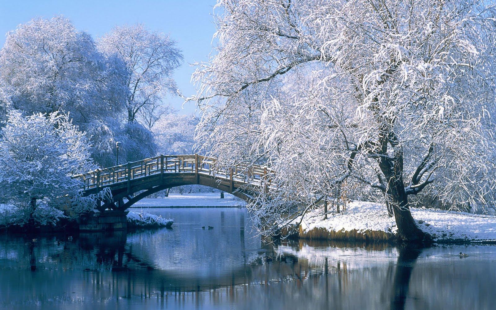 Nature wallpaper high resolution - Winter desktop ...