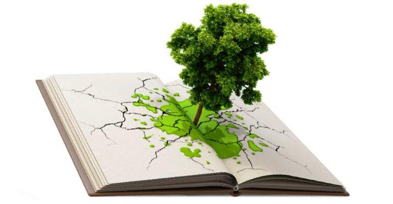 Resultado de imagem para Educação ambiental nas escolas