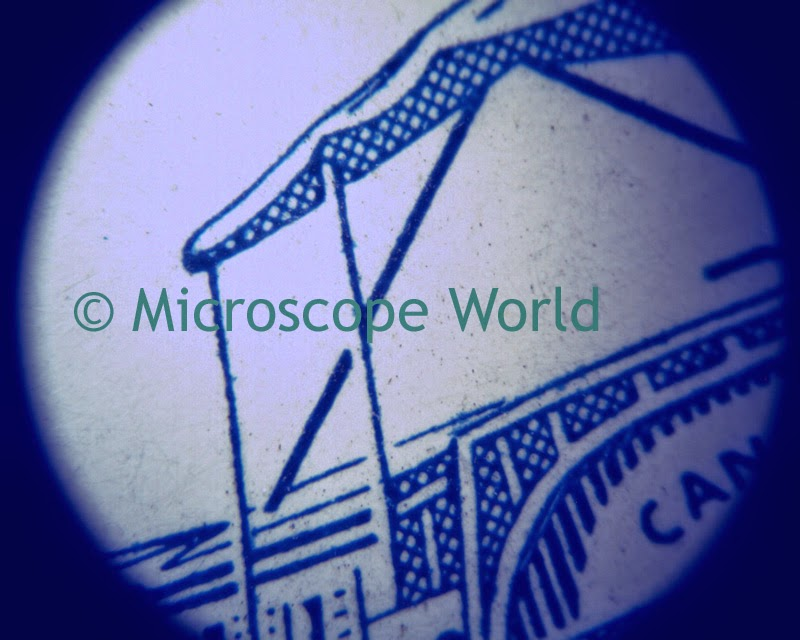 Postage Stamp under stereo microscope