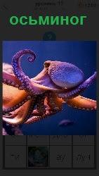 под водой плывет цветной осьминог с щупальцами