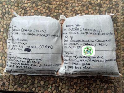 Benih pesana    SADIH Bekasi, Jabar.   (Sesudah Packing)