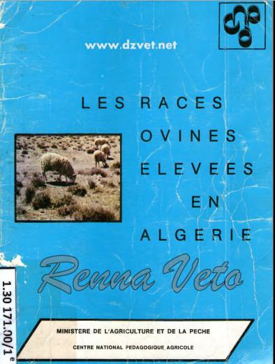 les races  ovines. élevées en algerie - WWW.VETBOOKSTORE.COM