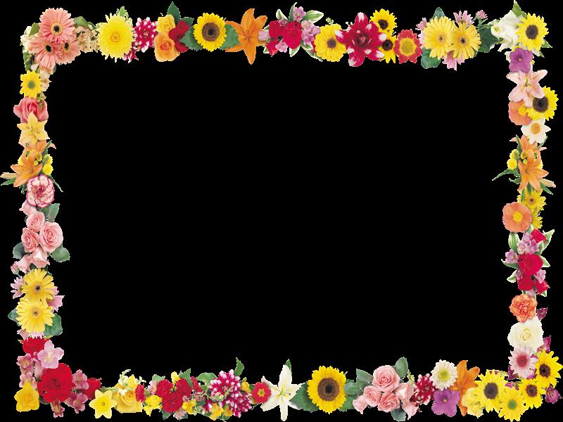 Marcos photoscape plantillas para adornar marcos para photoscape photoshop y gimp flores 21 - Marcos transparentes ...