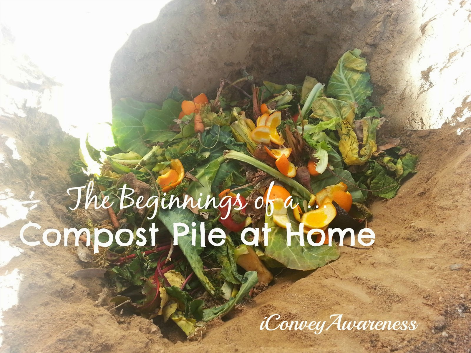 Convey Awareness | My first compost pile in the ground!