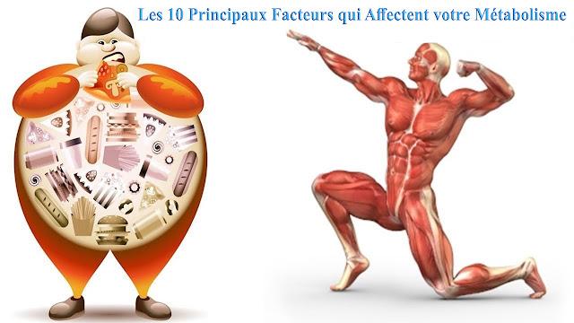 Les 10 Principaux Facteurs qui Affectent votre Métabolisme