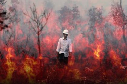 Jokowi Ralat Pernyataannya Soal Kebakaran Hutan, Ini Katanya