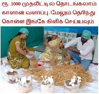 Suya Siru Tholil Thozhil Munaivor தொழில் Own Small Scale